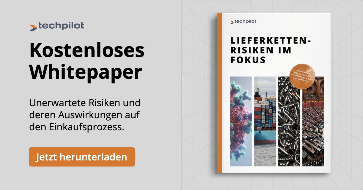 Lieferketten-Risiken-Whitepaper